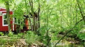 Discover The Quiet Side Of The Ozarks When You Check Into This Creekside Cabin In Missouri