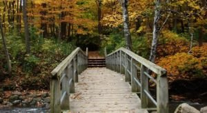 Explore Trails, A Natural Spring, And Even A Biergarten At Petrifying Springs Park In Wisconsin