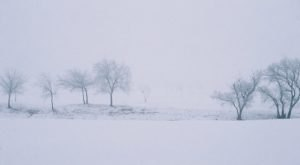 It's Impossible To Forget The Year Oklahoma Saw Its Single Largest Snowfall Ever
