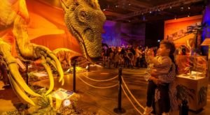 An Interactive Exhibit Like No Other, Dinosaurs Around The World Is Here In Mississippi
