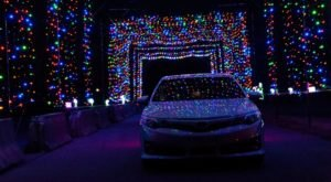 Kentucky's Enchanting 2-Mile Twinkle At The Track Holiday Drive-Thru Is Sure To Delight