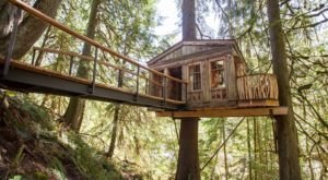 There's A Treehouse Village In Washington Where You Can Spend The Night