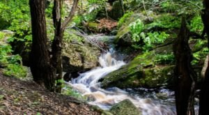 The 1.2-Mile Hike To Danforth Falls In Massachusetts Is Short And Sweet