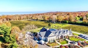 6 Wineries in Long Island, New York That You Need To Check Out This Fall