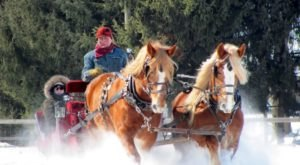 See The Charming Town Of South Bend In Indiana Like Never Before On This Delightful Carriage Ride