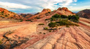 Hike To The Candy Cliffs In Utah To See Vibrant Colors