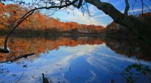 Discover The Beautiful Lakes Of Burlington County, New Jersey This Fall