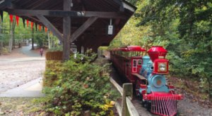 Ride A Magical Miniature Train Through The Woods Of Burke Lake Park In Virginia