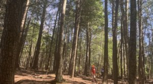 Take An Easy Loop Trail Past Some Of The Prettiest Scenery In Maine On The Philbrick Trail