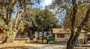 The Best-Kept Secret In Southern California, Oak Tree Mountain Is Brimming With Outdoor Activities And Charming Eateries