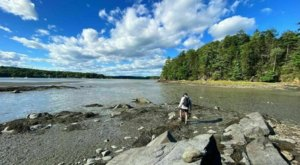 You'll Need The Whole Weekend To Explore All 244 Acres Of The Wolfe's Neck Center in Maine