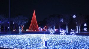 The Enchanting 2-Mile WonderLight's Christmas In Ohio Holiday Drive-Thru Is Sure To Delight
