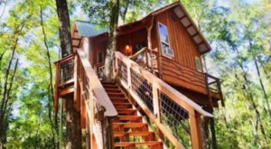 This Treehouse Getaway In Florida May Just Be Your New Favorite Destination