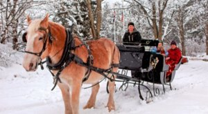 See The Charming Woods Of North Conway In New Hampshire Like Never Before On This Delightful Sleigh Ride