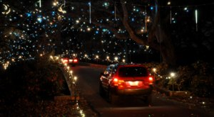 Virginia's Enchanting Garden Of Lights Holiday Drive-Thru Is Sure To Delight