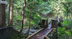 The New Hampshire Forest Trail That Holds An Often Forgotten Relic Of The Early Path Makers