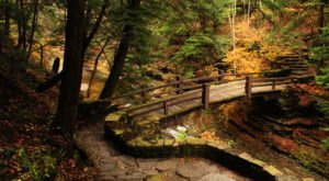 This State Park Is One Of Western New York's Most Beautiful Hidden Gems