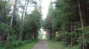For Tons Of Active Options Check Out Maine's 28-Mile Aroostook Valley Trail Network