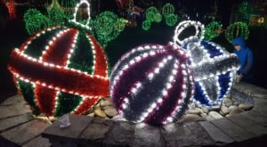 This Year, You Can Drive Your Own Car Through Winter Lights At The North Carolina Arboretum