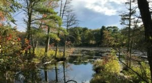 Take An Easy Loop Trail Past Some Of The Prettiest Scenery In Rhode Island On The Fisherville Brook Wildlife Refuge Trail