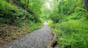 The Mount Airy Rails To Trails Hike In Maryland Is As Easy As It Is Beautiful