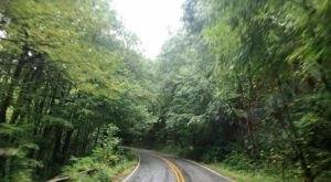 Everyone In North Carolina Should Take This Underappreciated Scenic Drive