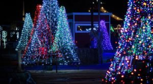 Arizona's Largest Walk-Through Christmas Light Show, Lights At The Farm, Will Make Your Holiday Season Magical