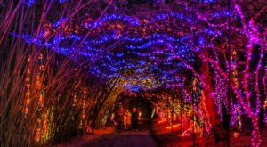 Have An Unforgettable Christmas Experience With A Visit To These 10 Festive Places In Alabama