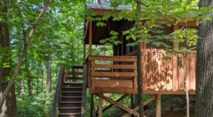 There's A Treehouse Village In Maryland Where You Can Spend The Night