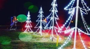 Arkansas' Enchanting 1.5-Mile Lights Of The Delta Holiday Drive-Thru Is Sure To Delight
