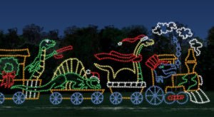 Drive Through Millions Of Lights At Shipshewana's Lights Of Joy In Indiana This Holiday