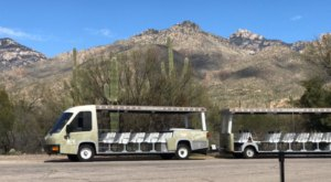 Take A Trolley Ride Through The Majestic Arizona Desert Landscape On The Sabine Canyon Crawler