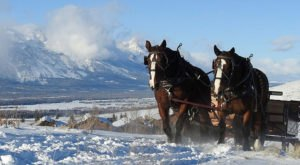 Take A Sleigh Ride Through An Idyllic Mountain Landscape At Spring Creek Ranch In Wyoming