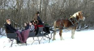 This Illinois Sleigh Ride Takes You Through A Winter Wonderland