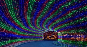 Texas' Enchanting Trail Of Lights Holiday Drive-Thru Is Sure To Delight