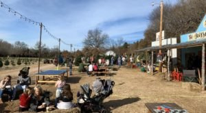 Experience Old Fashioned Family Fun At Well's Family Christmas Tree Farm In Oklahoma