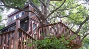 There's A Treehouse Village In Illinois Where You Can Spend The Night