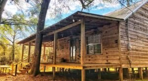 This Creekside Cabin In Mississippi Is Perfect For Your Next Glamping Adventure