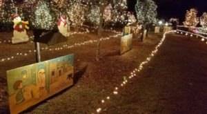 Lewis Lights In Mississippi Is Back For Its 31st Year To Spread Some Holiday Cheer