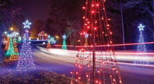 Drive Through Thousands Of Lights At Santee Cooper In South Carolina This Holiday Season
