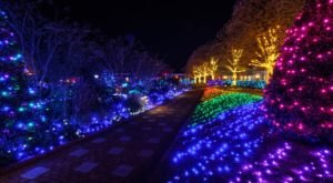 Walk Through Thousands Of Holiday Lights At Dominion GardenFest Of Lights In Virginia