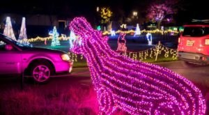 Oregon's Enchanting Zoo Lights Holiday Drive-Thru Is Sure To Delight