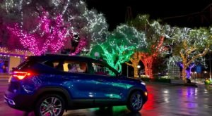 New Jersey's Enchanting Holiday In The Park Drive-Thru Is Sure To Delight