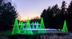 The Garden Christmas Light Displays At Daniel Stowe Botanical Garden In North Carolina Is Pure Holiday Magic