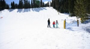 The Giant Sledding Hill At Granlibakken In Northern California That You'll Want To Ride Down Again And Again