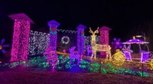 Walk Through Thousands of Holiday Lights At Oregon Garden Resort