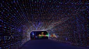 Utah's Enchanting Fantasy At The Bay Christmas Lights Holiday Drive-Thru Is Sure To Delight