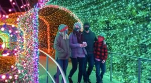 Garden Lights, Holiday Nights In Georgia Will Make You Feel Like You're In The North Pole