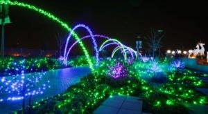 Walk Through An Illuminated Botanical Garden At Gardens Aglimmer In Kentucky
