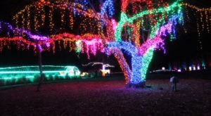 The Garden Christmas Light Displays At Overland Park Arboretum In Kansas Is Pure Holiday Magic